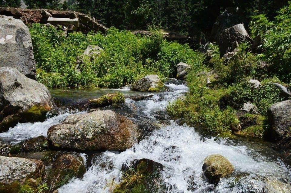 Chashmae Valley Swat